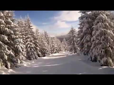 Skifahren in Muggenbrunn
